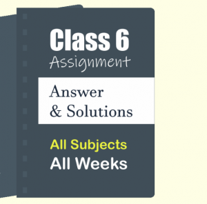 Class 6 3rd Week Assignment