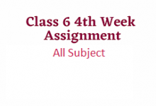 Class 6 Assignment 4th week